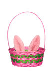 Easter basket with bunny ears Royalty Free Stock Images