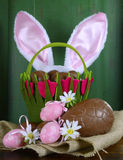 Easter basket with bunny ears and chocolate Easter eggs Stock Photo