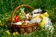 Easter basket and bunny. stock photo