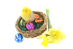 Easter Basket with chick. On a light background Royalty Free Stock Photo