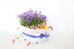 Easter basket chocolate eggs flowers Stock Images