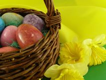 Easter Basket Close-up. Easter basket with marble eggs and daffodils Royalty Free Stock Photography