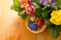 Easter basket with colored eggs and primrose. Stock Photos
