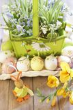 Easter basket with eggs, flowers and Easter bunny Stock Image