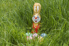 Easter basket in deep grass Royalty Free Stock Photography