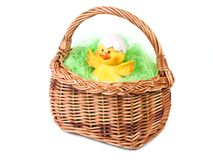 Easter basket with duckling Royalty Free Stock Photography