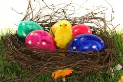 Easter basket with Easter eggs and chicks Royalty Free Stock Photos