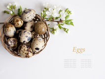 Easter basket with easter eggs on white background Stock Photos