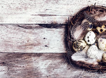 Easter basket with Easter Eggs on wooden background. Quail easte Stock Photography
