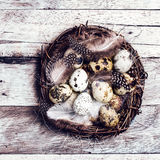 Easter basket with Easter Eggs on wooden background. Quail easte Stock Images
