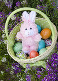 Easter basket of eggs with bunny surrounded by spr Royalty Free Stock Photos