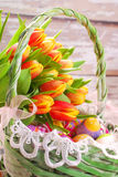 Easter basket with eggs and fresh tulips Royalty Free Stock Photography