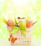 Easter Basket Eggs, Spring Objects Decorated by Grass Bird Butte Royalty Free Stock Photography