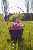 Easter Basket. A Basket of Easter eggs on a sunny day in the park Stock Image
