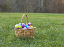 Easter Basket full of eggs in a Field. On a Sunny day Royalty Free Stock Photography