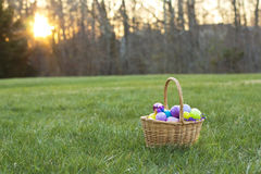 Easter Basket full of eggs in a Field. On a Sunny day Royalty Free Stock Photos