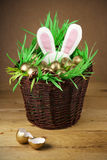 Easter basket, golden eggs. Stock Photography