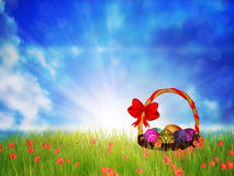 Easter Basket on Grass Royalty Free Stock Images