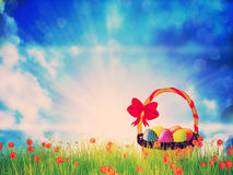 Easter Basket on Grass Royalty Free Stock Photography