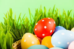 Easter basket on grass Stock Photography