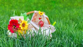 Easter basket in green grass. On a blurred background of meadow with bokeh effect Royalty Free Stock Photo