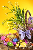 Easter basket with narcissus Stock Photography