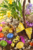 Easter basket with narcissus Royalty Free Stock Photography
