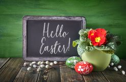 Easter basket with painted Easter eggs and red primrose pot flow Royalty Free Stock Photography