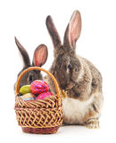 Easter basket and rabbits. Royalty Free Stock Photos