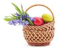 Easter basket with snowdrops. Stock Images