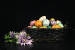 Easter Basket Spring Flowers Royalty Free Stock Photo