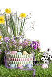 Easter Basket Spring Flowers Stock Photo
