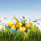 Easter basket  in spring mountains Stock Image