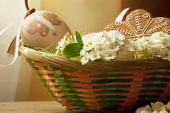 Easter basket with white flowers. Basket with colored eggs, flowers and gingerbread Royalty Free Stock Photography