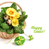 Easter basket with yellow primrose and Easter eggs on white Stock Photography