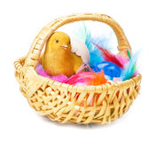 Easter Baskets, easter eggs Royalty Free Stock Photos
