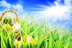 Easter Baskets in the grass, eggs, sunshine Royalty Free Stock Photos