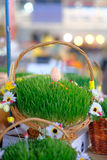 Easter baskets with grass Royalty Free Stock Images