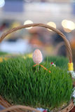 Easter baskets with grass Royalty Free Stock Photo