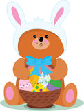 Easter Bear. A teddy bear dressed as an Easter Bunny Royalty Free Stock Image