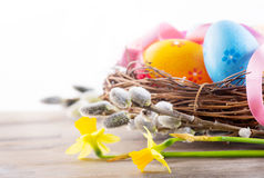 Easter. Beautiful colorful eggs in the nest with spring flowers Stock Images