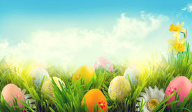Easter. Beautiful colorful eggs in spring grass meadow stock image