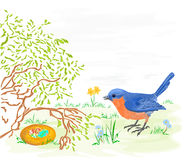Easter bird with daffodils and easter eggs Royalty Free Stock Images