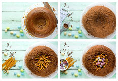 Easter bird nest cake - chocolate cake with pastel candy eggs in Stock Images