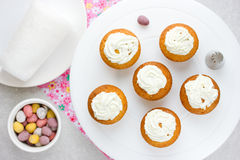 Easter birds nest cupcakes with chocolate candy eggs , whipped c Stock Photography