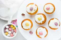 Easter birds nest cupcakes with chocolate candy eggs , whipped c Royalty Free Stock Photography