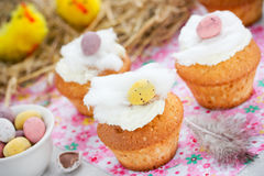 Easter birds nest cupcakes Stock Images