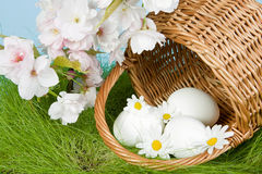 Easter blossoms and eggs Stock Images