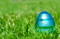 Easter blue egg on the grass background Stock Photography