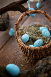 Easter blue eggs Royalty Free Stock Image